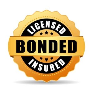 The Detailing Syndicate Simi Valley, CA is Fully Licensed, Bonded & Insured
